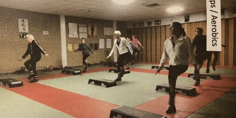 Trainer Steps/Aerobics